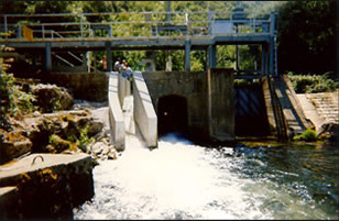 Construction of a fish ladder